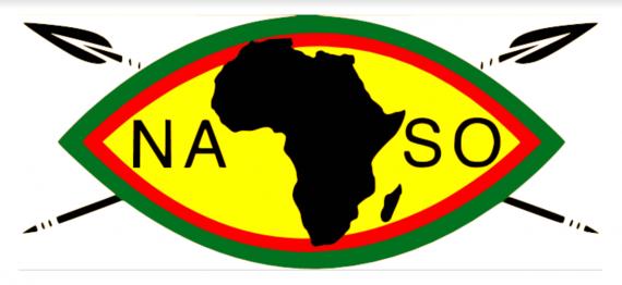 NASO Logo.rev.1560279014