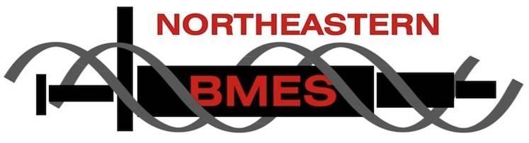 Northeastern BMES