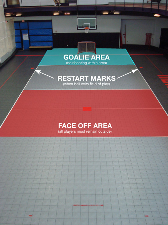 Mini Lacrosse Field Overview
