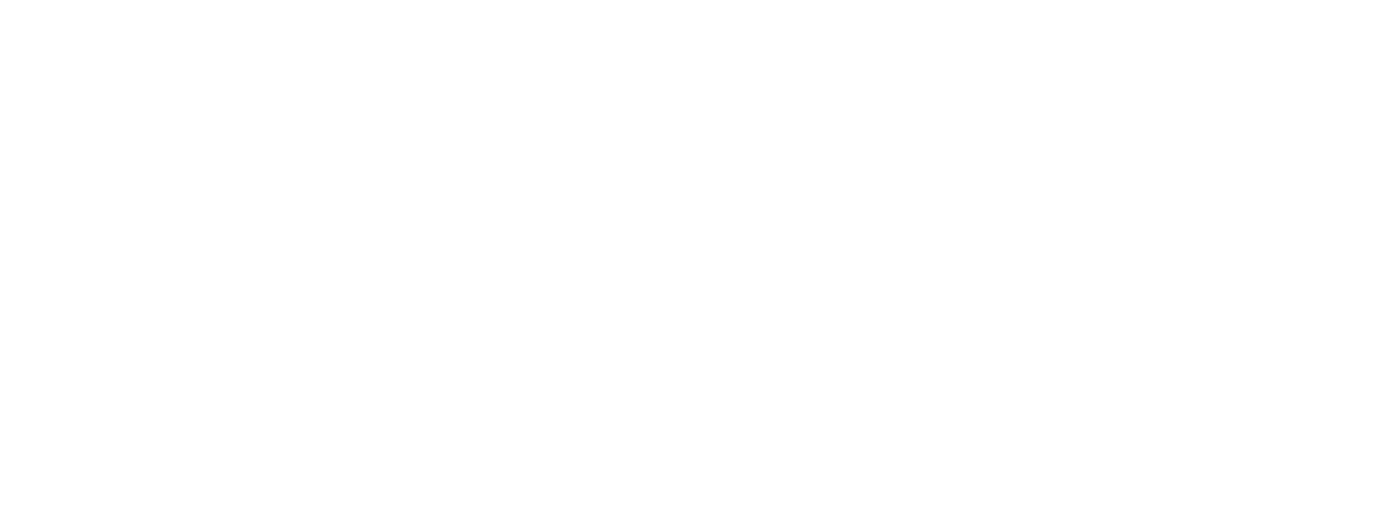 Northeastern Logo White