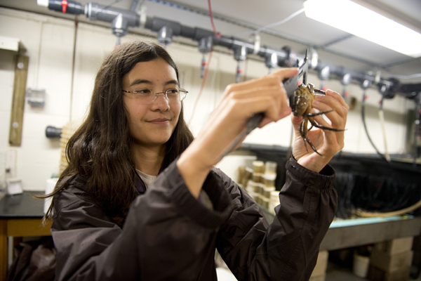3 Students Earn NSF Graduate Research Fellowships photo