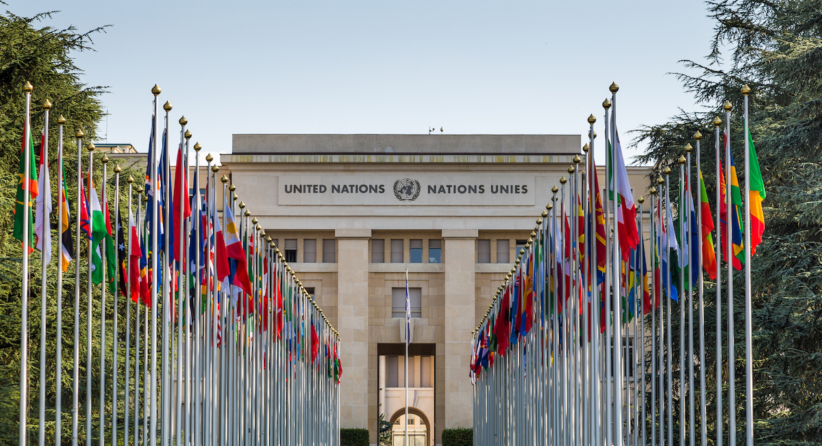 UN Careers: 9 United Nations Career Paths