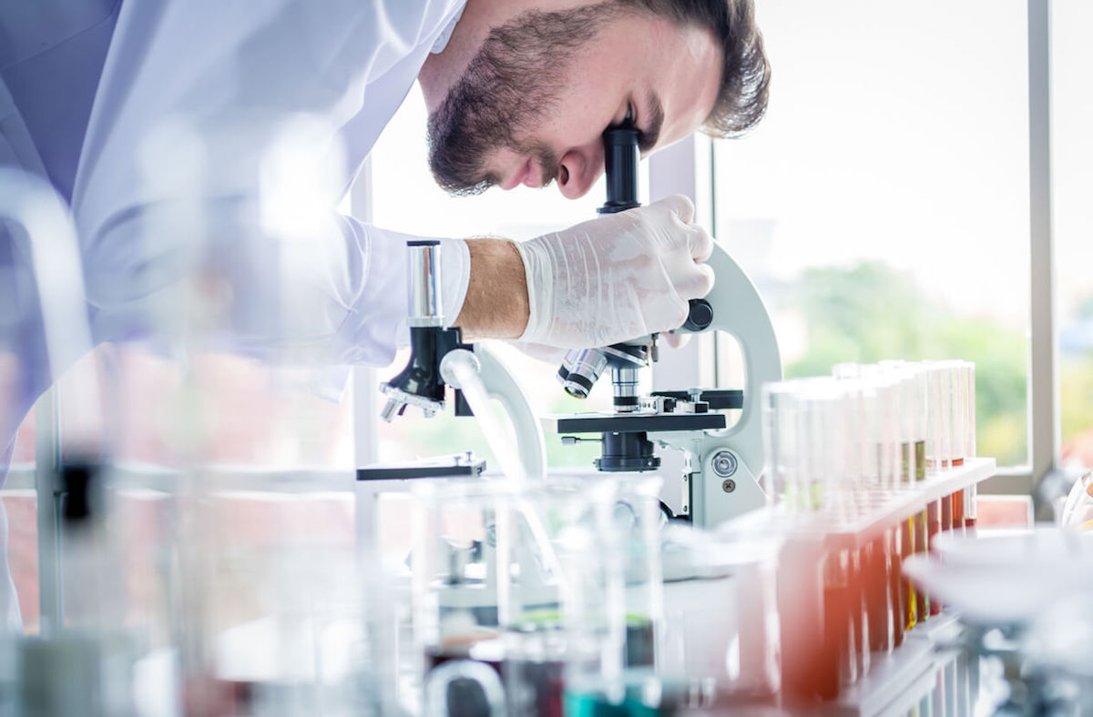 How to Choose a Biotechnology Concentration