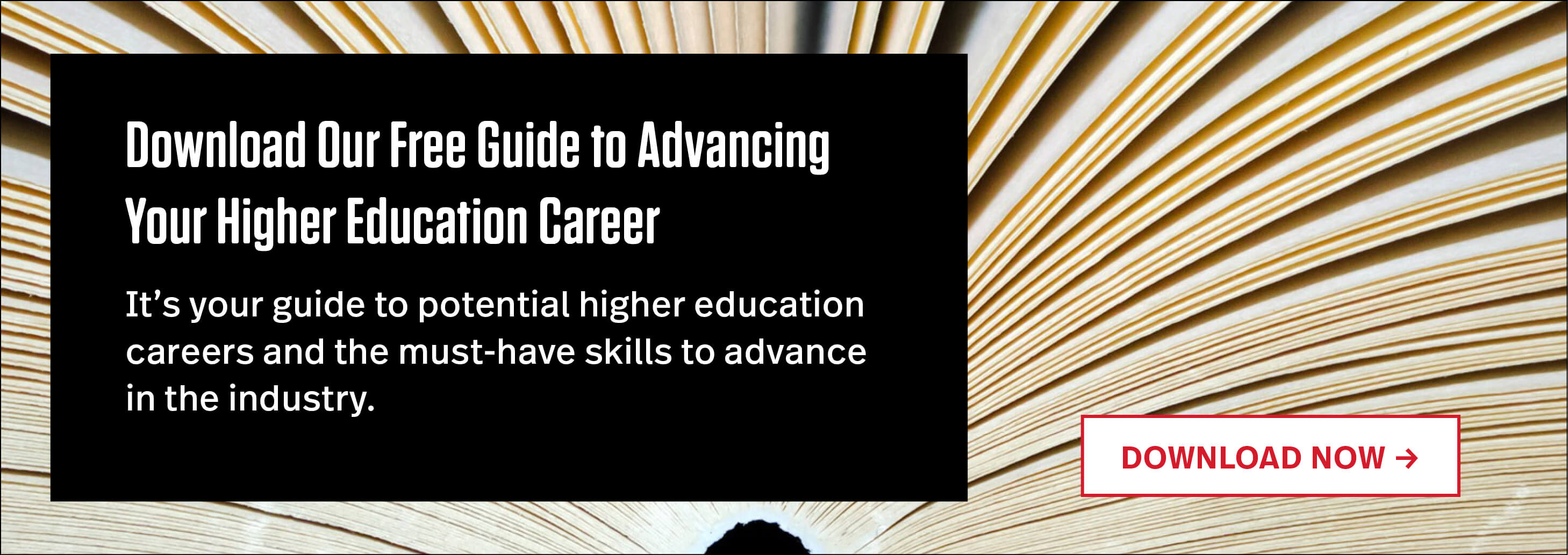 """Download Our Free Guide to Advancing in Higher Education"""" width="""