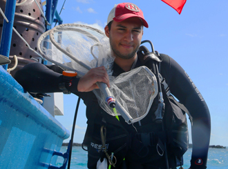 Student dives in for Caribbean fish
