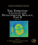 Methods in Cell Biology The Zebrafish Cellular and Developmental Biology, Part B