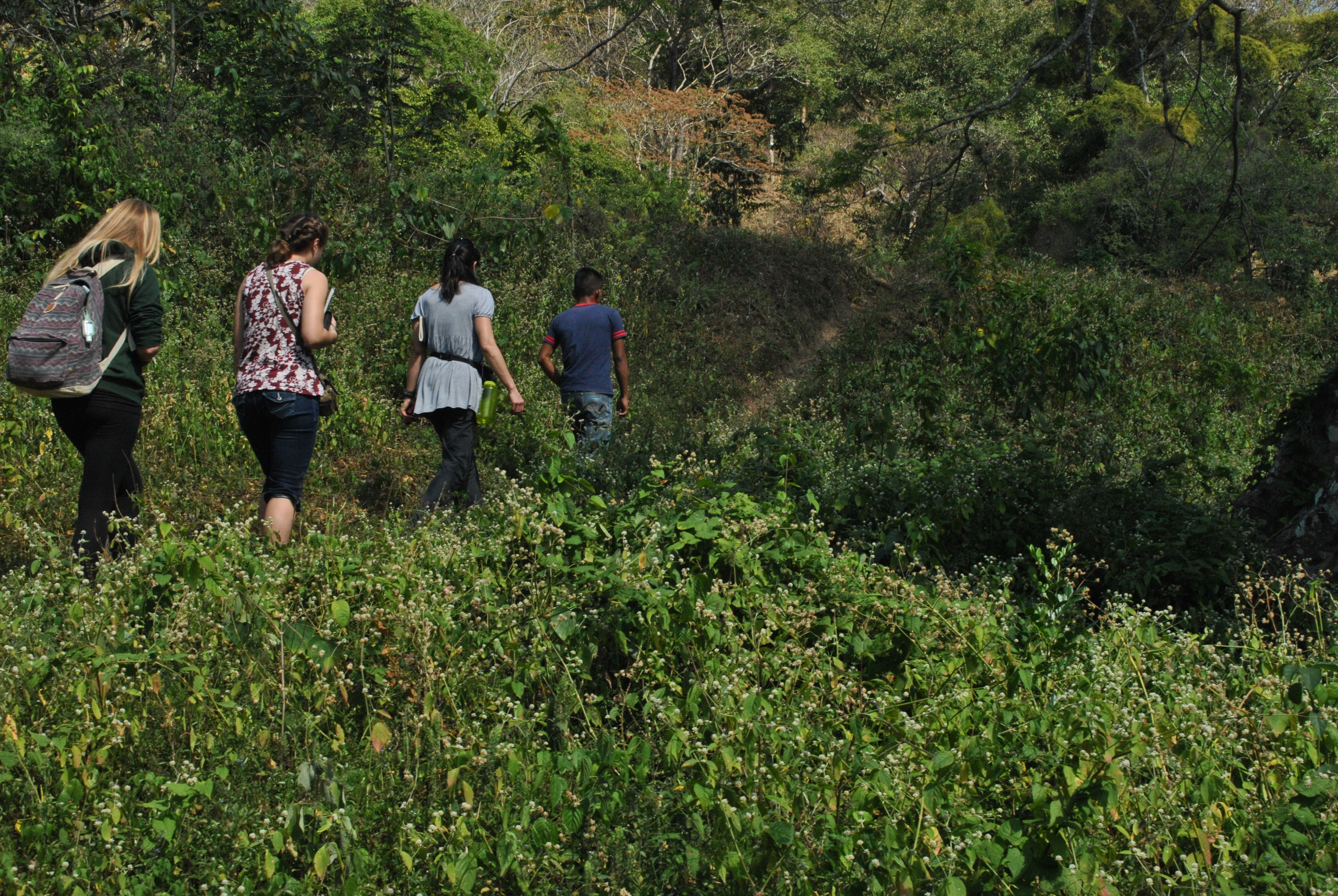 SEI students visiting fair trade cooperatives in coffee country, Nicaragua